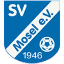 Vereinsgeschichte